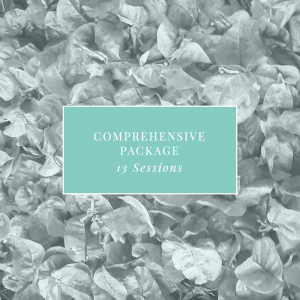 Comprehensive Package 1