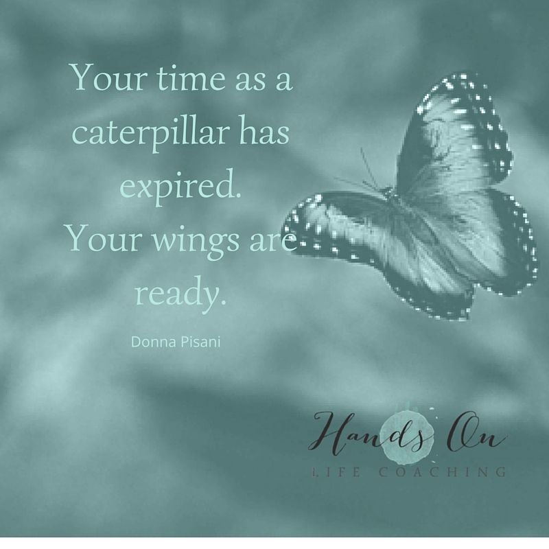 Your time as a caterpillar has expired. Your wings are ready.