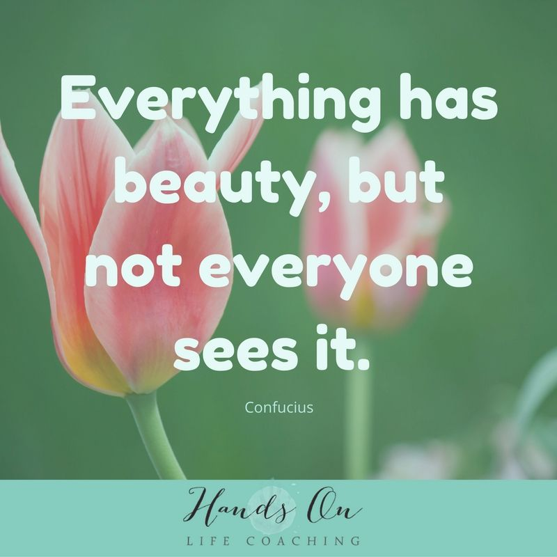 everything-has-beauty-but-not-everyone-sees-it-confucius