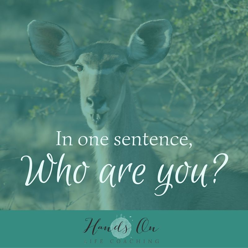 in-one-sentence-who-are-you_