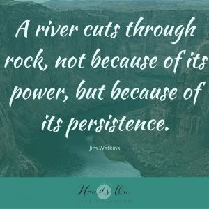 A river cuts through rock, not because of its power, but because of its persistence