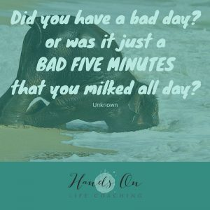 Did you have a bad day_or was it just a BAD FIVE MINUTES that you milked all day_